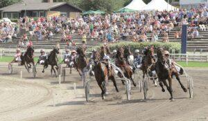 Read more about the article Succesfuld fredag for de århusianske monteryttere